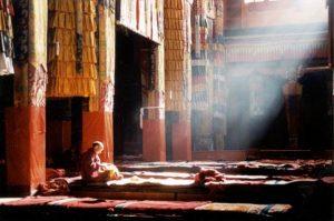 tour 260 MonasteryTibet