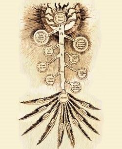 """Obrnjeno drevo, gravura iz knjige R. Fludda """"Skrivnosti filozofije in krščanske vere"""", 1626"""