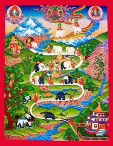 Nova Akropola - Tibet-obvladovanje-uma-1