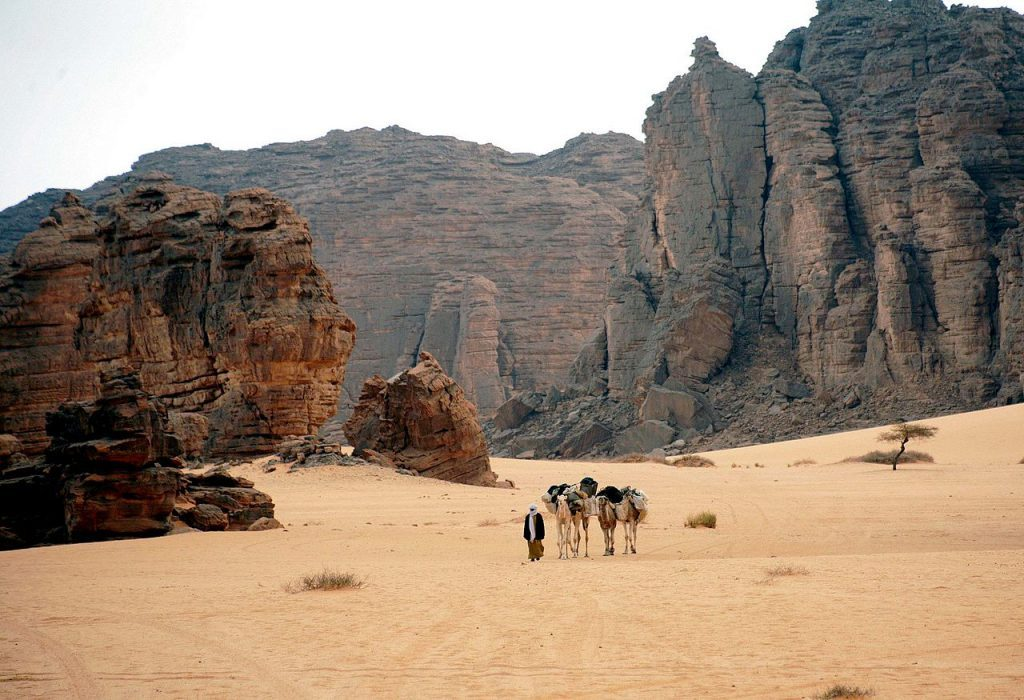 Nova Akropola - Tassili-Desert-Algeria